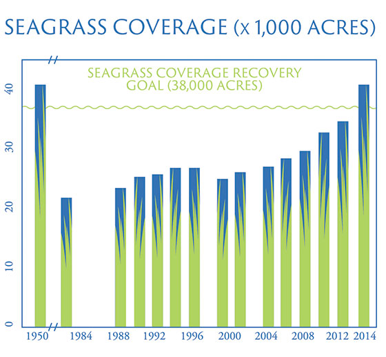 Chart courtesy Tampa Bay Estuary Program.
