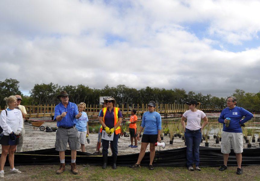 Volunteer planting event